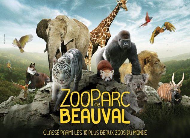 Sortie au zoo Parc de Beauval